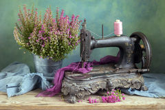 Old sewing machine. Still life with old sewing machine and heather royalty free stock image