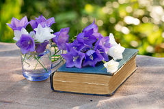 Old shabby book and flowers Royalty Free Stock Images