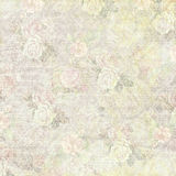 Old shabby faded floral background Stock Image