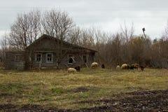 Old shabby house Stock Image