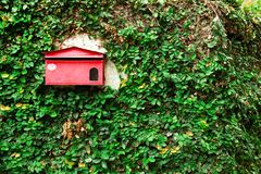 Old shabby red postbox on a wall with green leaves. Stock Photo