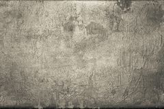 Old shabby skin of dark beige color with gloss Stock Photography