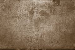 Old shabby skin of dark brown color with gloss Royalty Free Stock Images