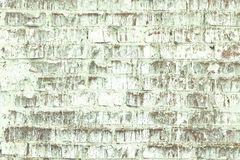 Old shabby wall of green brick color as  abstract background stock image