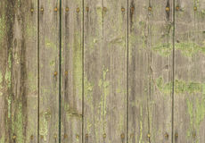 Old shabby wood wall with ruty nails stock photos
