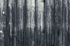 Free Old Shabby Wooden Gray Fence. Grey Wood Surface. Dilapidated Gray Wooden Boards With Hobnail. Grunge Wood Pattern Texture Backgrou Stock Image - 148165451