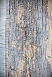 Old shabby wooden surface background Royalty Free Stock Images