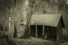 The Old Shack Stock Image