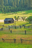 Old shack in green meadow. Old wooden shack in lush green meadow with wooden fences Royalty Free Stock Images