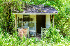 Old Shack Overgrown in Woods Royalty Free Stock Photography