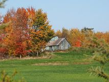Old shack. Photo taken this fall near Acton Vale, Qc, Canada Stock Photography