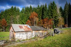 Old Shack stock photography