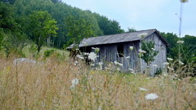 Old shed in the country stock video footage