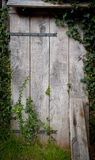 Old shed door Stock Images