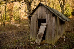 Old shed in forest. Old shed in the autumn forest Stock Images