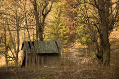 Old shed in the forest. Old shed in the autumn forest Royalty Free Stock Images