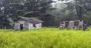 Old shed in forest Royalty Free Stock Photography