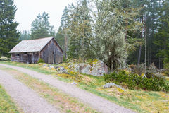 Old Shed at the gravel road royalty free stock photography