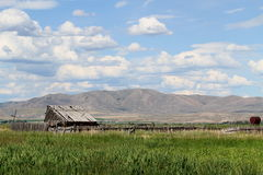 Old Shed Landscape Stock Image