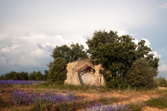 Old shed in Provence Royalty Free Stock Images