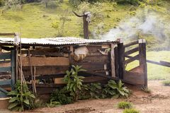 Old shed of stuff and tools in use in the little farm. In Sao Paulo, Brazil stock images
