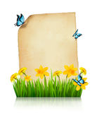 Old sheet of paper with spring flowers and butterflies. Vector Stock Photo