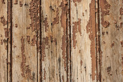 Old shelling wooden slats Stock Photos