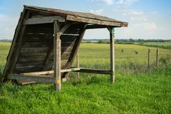 Old shelter in green wheat field stock photos