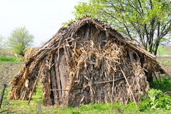 Old shelter made from corn cobs Stock Photo