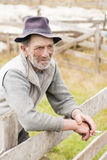 Old Shepherd Man Stock Photography