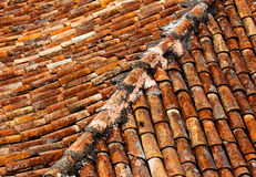 Old shingles on the roof Stock Images