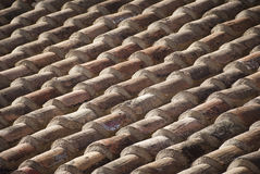 Old shingles Royalty Free Stock Photo