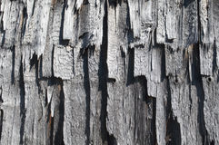 Old shingles. Shingles. Texture of old wooden plates Royalty Free Stock Photos