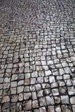 Old shiny pavement Stock Image