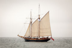 Old ship sailing in the sea Royalty Free Stock Photo