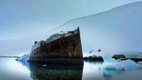 Old ship wreck at shore in Antarctica stock photo