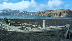 Old ship wreck at shore in Antarctica stock photography