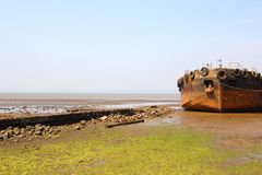 An old Shipwreck at the beach royalty free stock photos