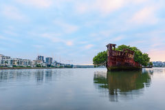 Old Shipwrecks of Homebush Bay in Sydney Australia. 102 year old Shipwrecks of Homebush Bay in Sydney Australia became A Floating Forest Royalty Free Stock Photos