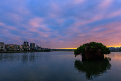 Old Shipwrecks of Homebush Bay in Sydney Australia. 102 year old Shipwrecks of Homebush Bay in Sydney Australia became A Floating Forest Stock Photography