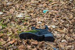 Old shoe Royalty Free Stock Photo