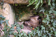 Old shoe. Old boot in the overgrown wall niche Stock Photos