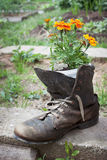 Old shoe used in garden design Stock Images