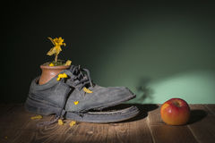 Old shoes and dried flowers Royalty Free Stock Photo