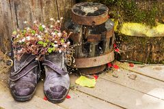 Old shoes with flowers on old wood background Stock Photo
