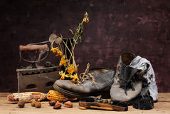 Old shoes and iron Royalty Free Stock Images