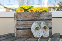 Old shoes near the box with flowers Royalty Free Stock Photo