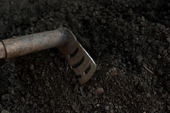 An old shovel stuck into the black earth dug in the garden.  Royalty Free Stock Photos