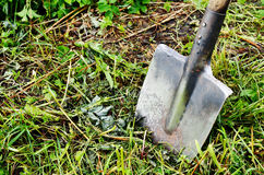 Old shovel stuck in the ground Royalty Free Stock Photography