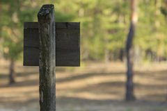 Old Signpost. Back side of an old wooden signpost in the forest stock photo